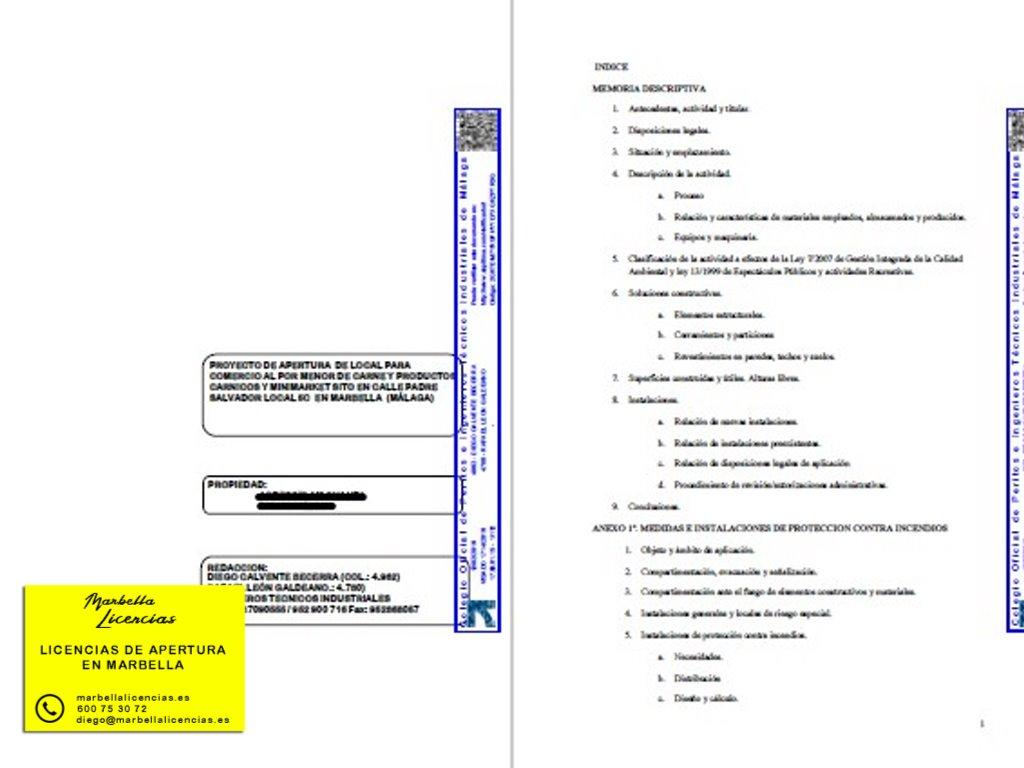 Proyecto Licencia Apertura Carniceria Marbella 001